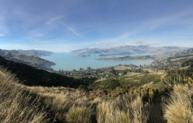 Panoramic Lyttelton harbour 1500