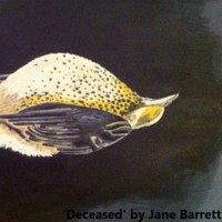 Deceased by Jane Barrett thumb