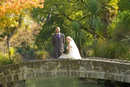 Botanic Gardens Wedding thumbnail