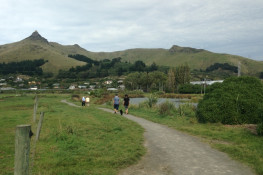 Matuku Lakes Loop Walk