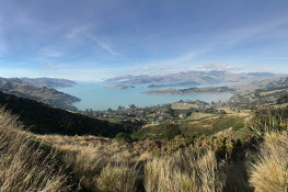 Panoramic Lyttelton harbour thumbnail