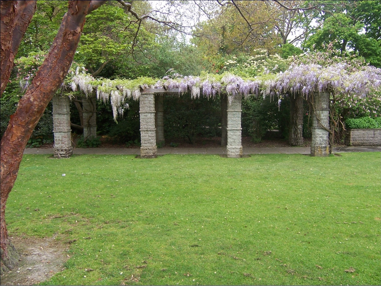 lawn with stone pergola behind it