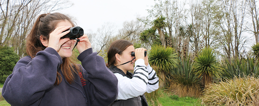Students searching the wetlands