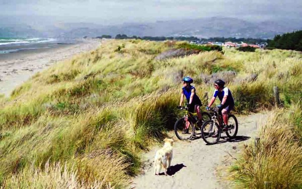 Dog running through sand dune following two cyclists.