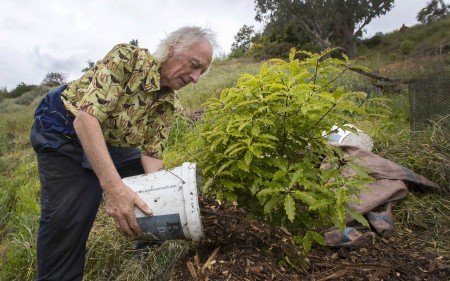 Kev Dean planting a tree on the Port Hills.