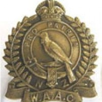 NZWAAC Badge